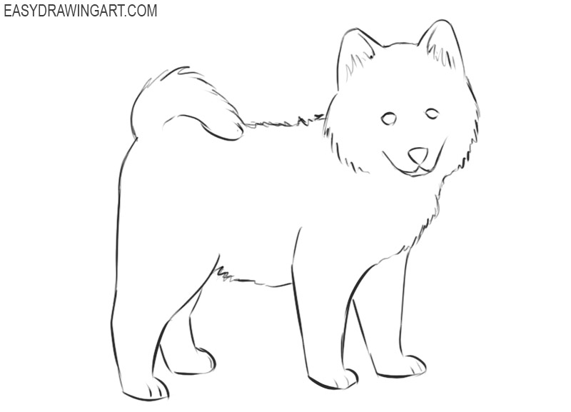 how to draw a puppy easy draw so cute