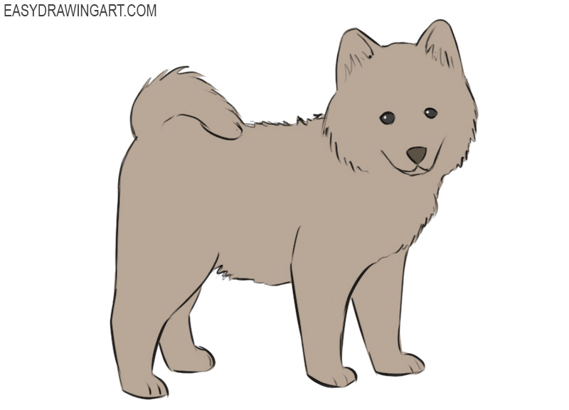 How To Draw A Cute Dog Easy Drawing Art