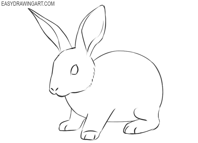 how to draw a rabbit easily