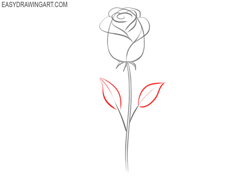 how to draw a rose by draw so cute