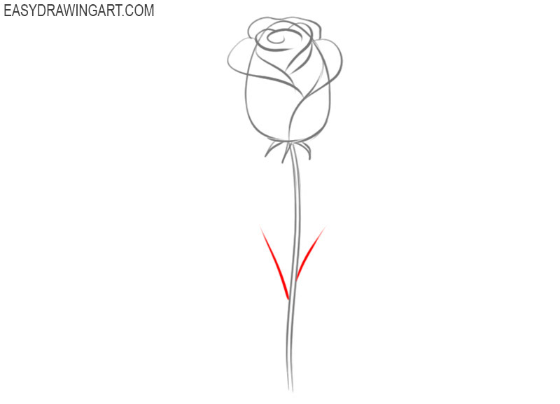 how to draw a rose by steps