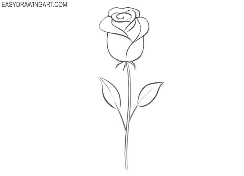 how to draw a rose cartoon
