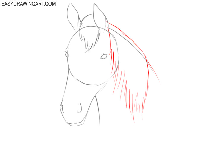 how to draw a simple horse head for beginners