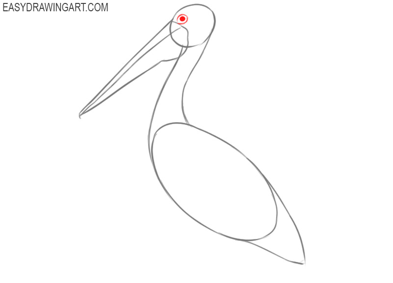 how to draw a simple pelican