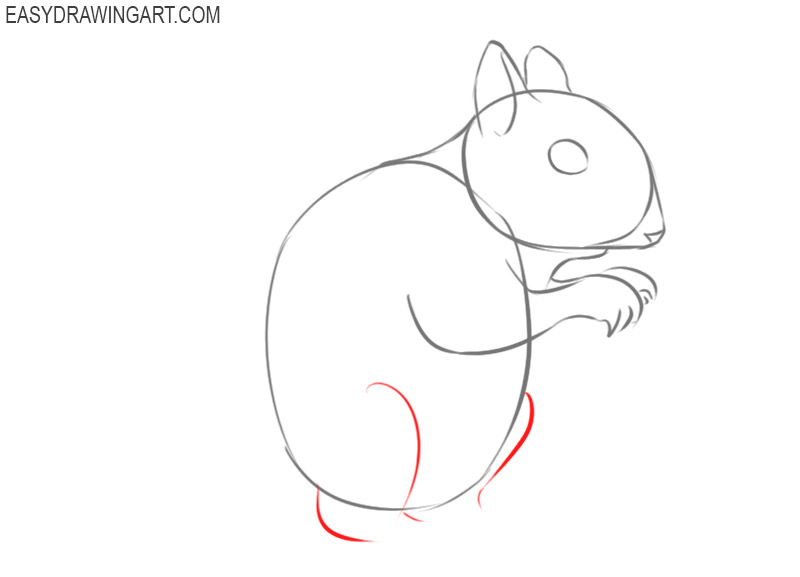 how to draw a squirrel step by step cartoon