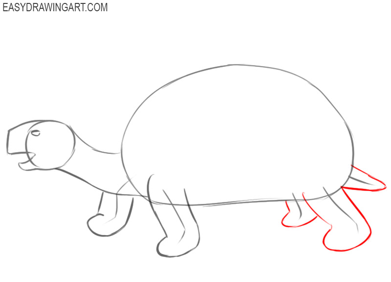 how to draw a tortoise in easy way