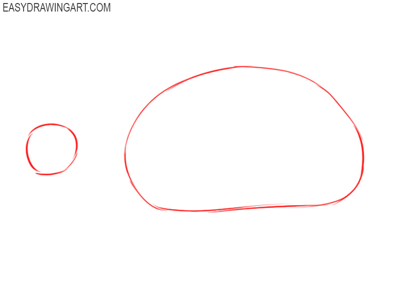 how to draw a tortoise step by step