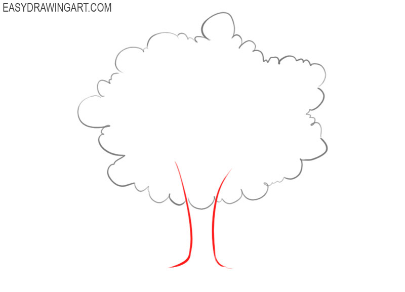 how to draw a tree with branches step by step