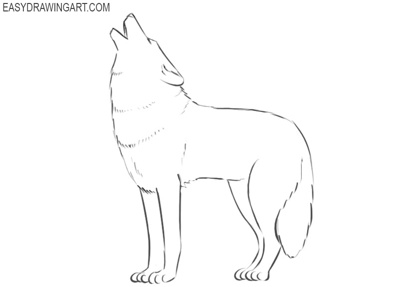 how to draw a wolf cartoon easy