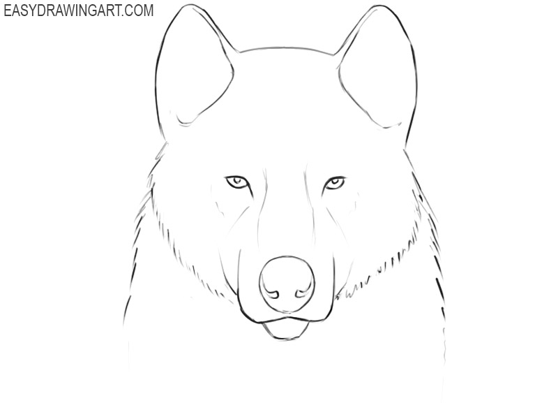 how to draw a wolf face easy step by step