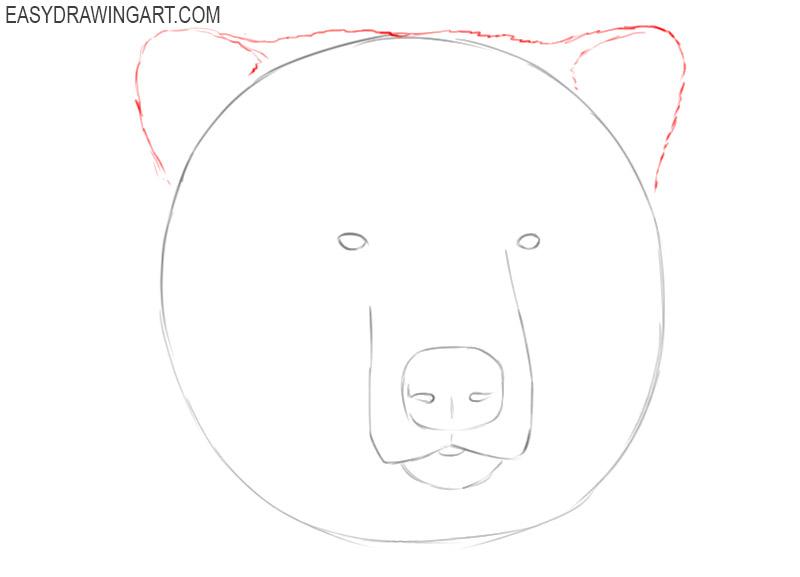 how to draw an easy bear head