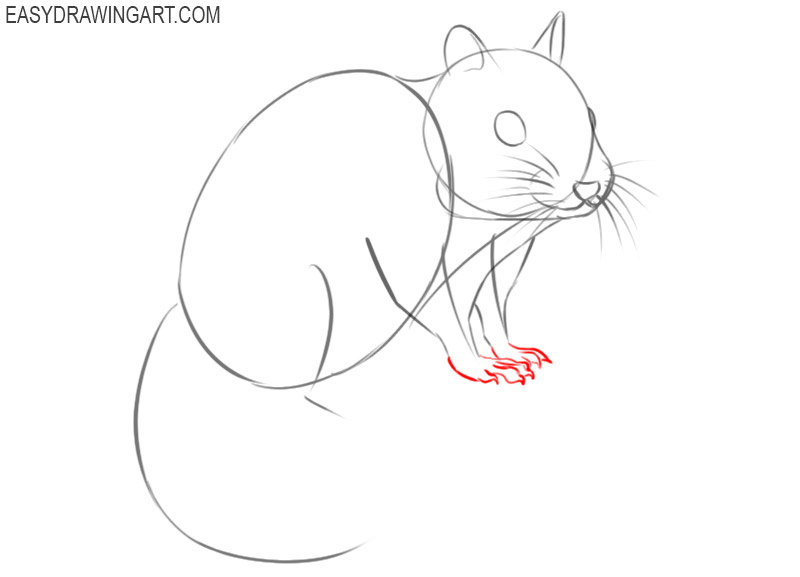 how to draw an easy chipmunk