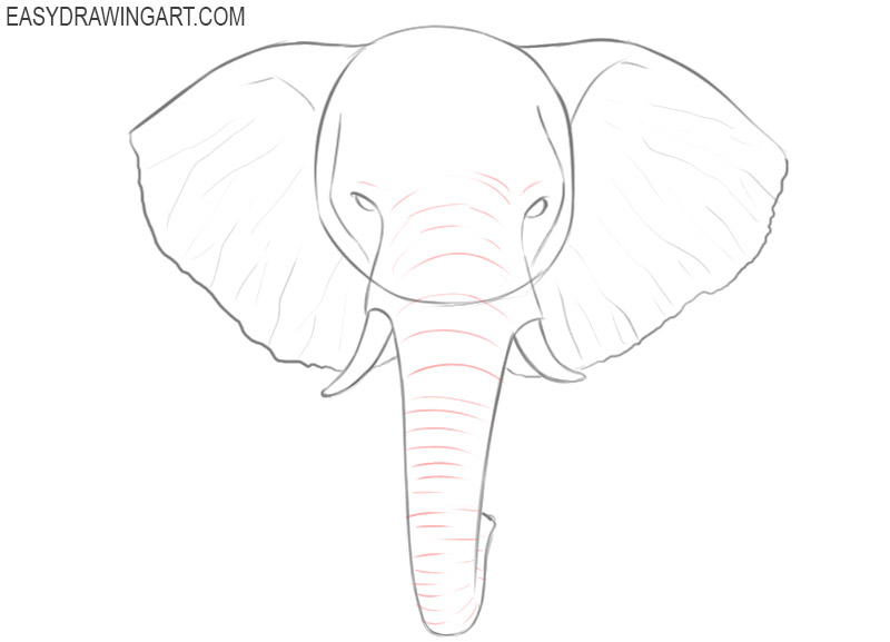 how to draw an easy elephant head step by step