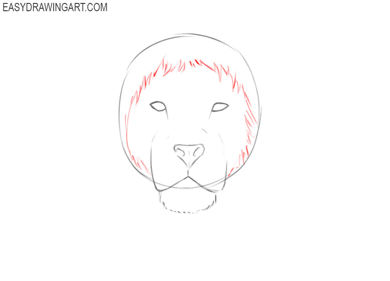 how to draw an easy lion head