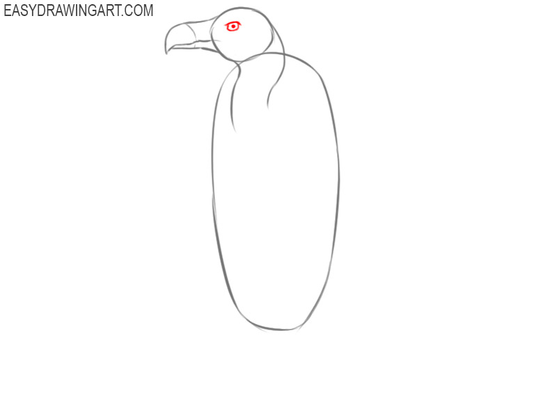 how to draw an easy vulture