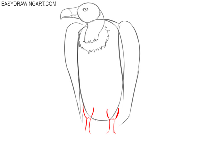 how to draw easy cartoon vulture
