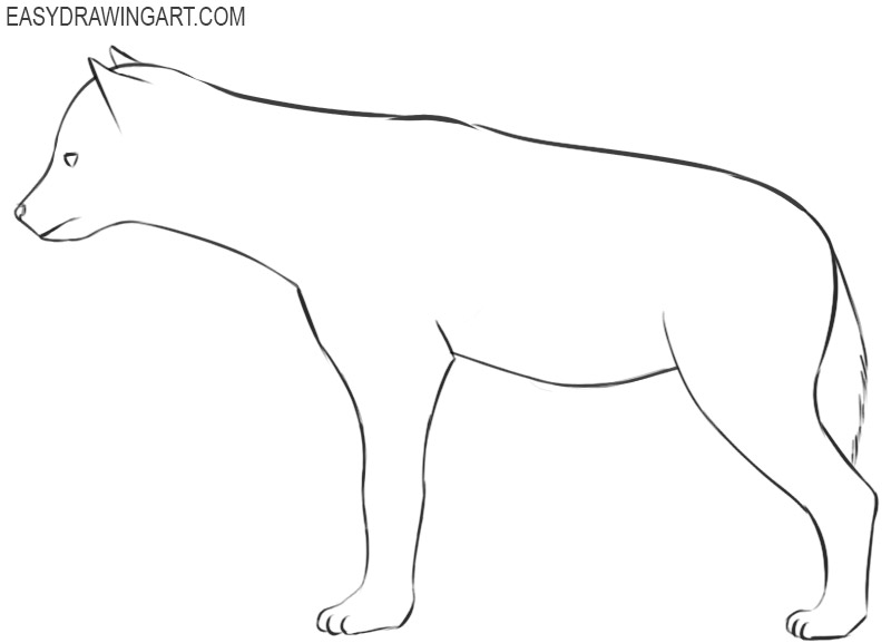 hyena drawing images