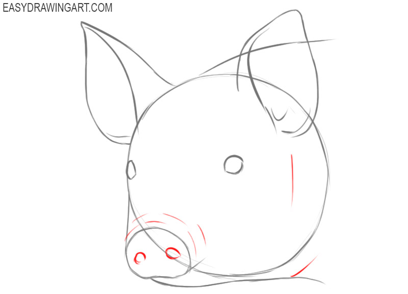 pig face drawing easy