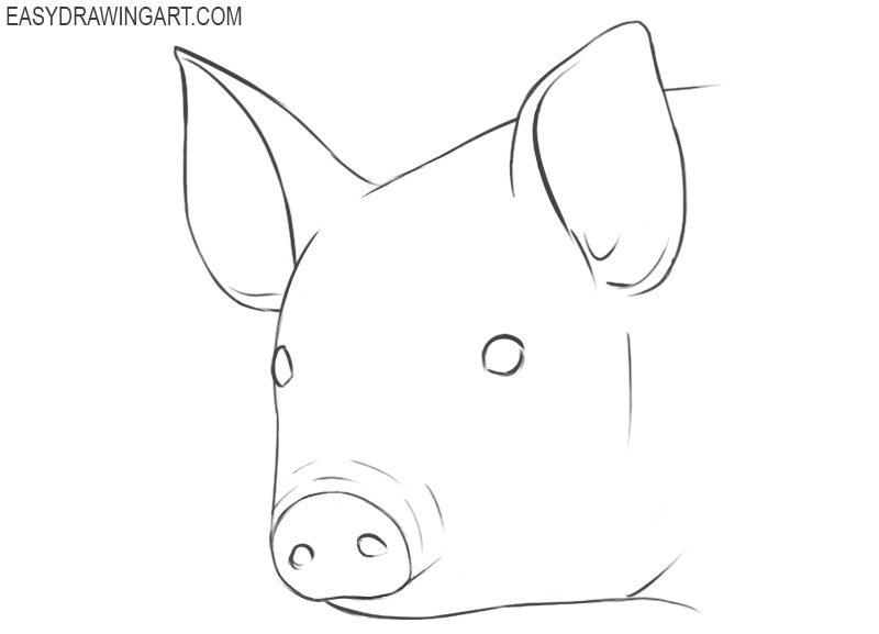 pig face drawing simple