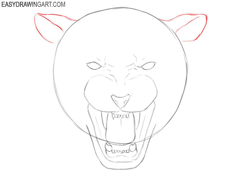 tiger head drawing cartoon