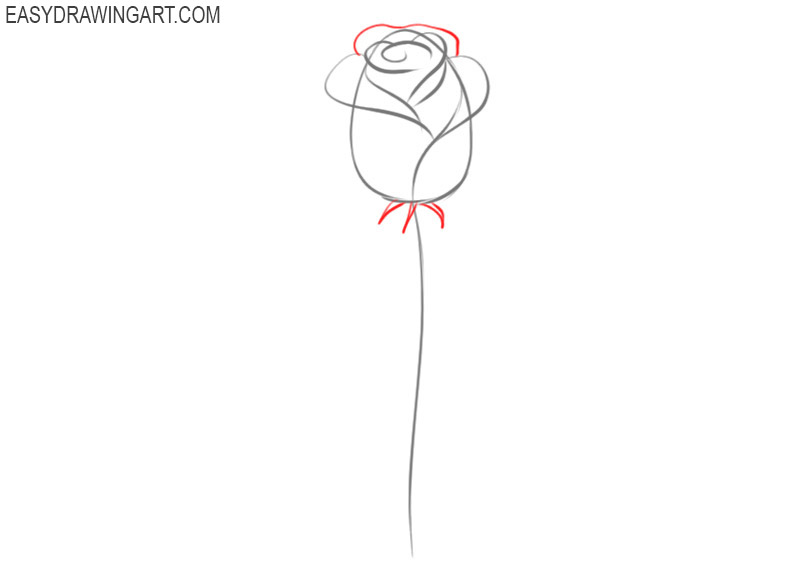 tutorial of how to draw a rose