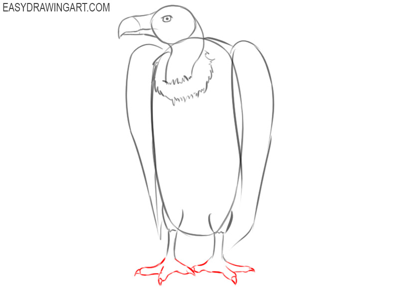vulture drawing easy