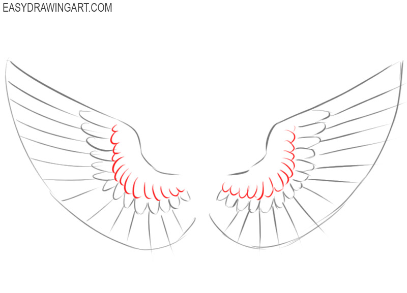 wings drawing step by step