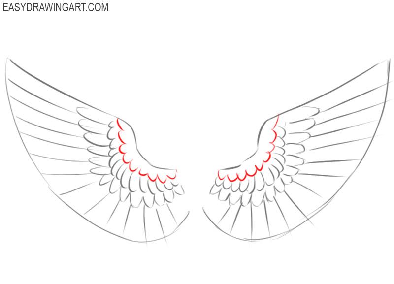 wings drawing tutorial