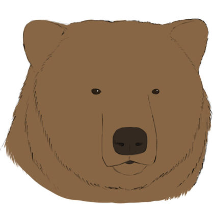 How to draw a bear head