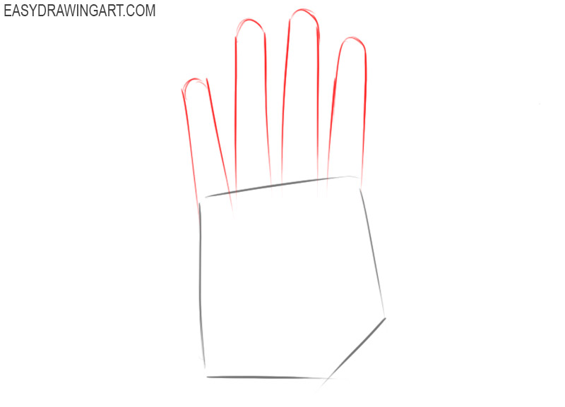How to draw a hand for beginners