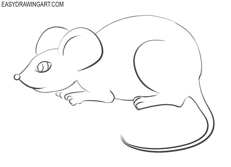 How to draw a mouse easy