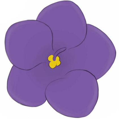 How to draw a violet