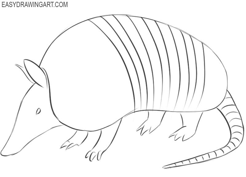 armadillo simple drawing