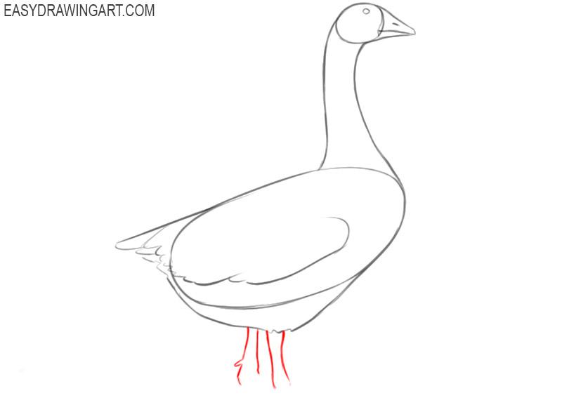 goose drawing cute
