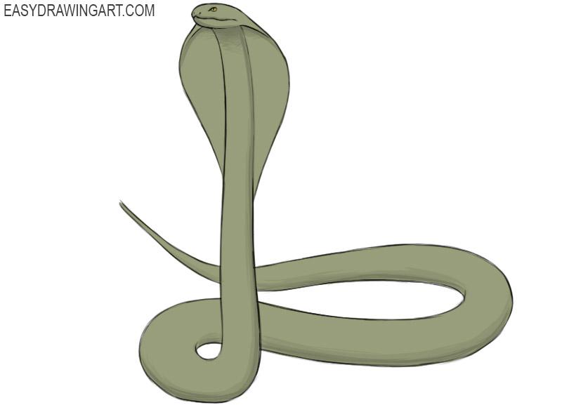 how to draw a cobra