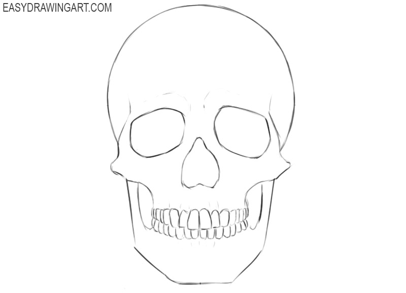 how to draw a human skull step by step easy