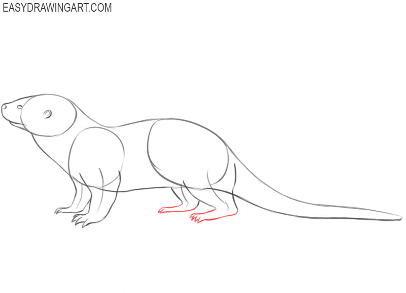 how to draw a picture of otter