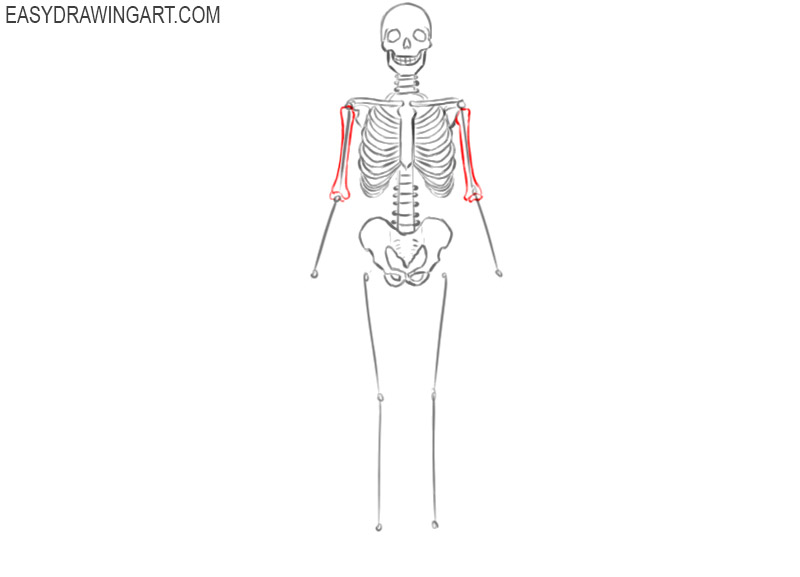 how to draw a skeleton picture
