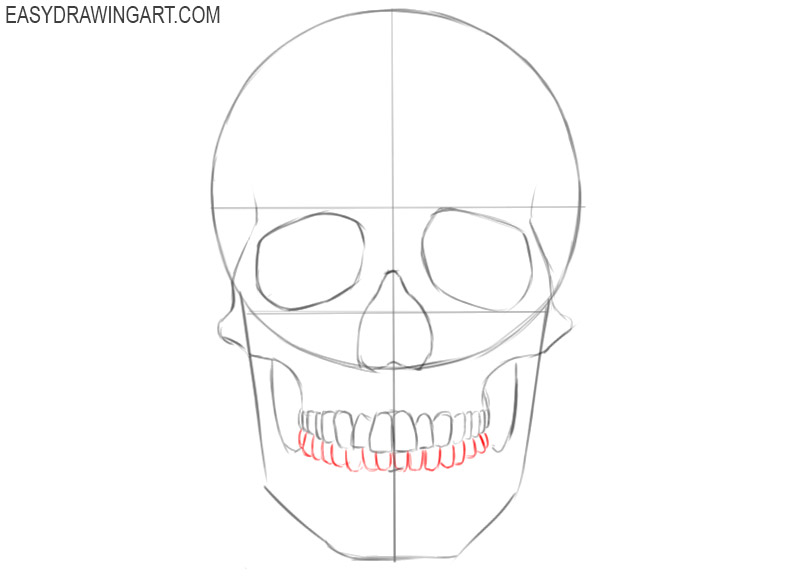 how to draw a skull human