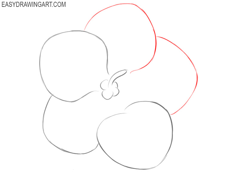 how to draw a violet for beginners