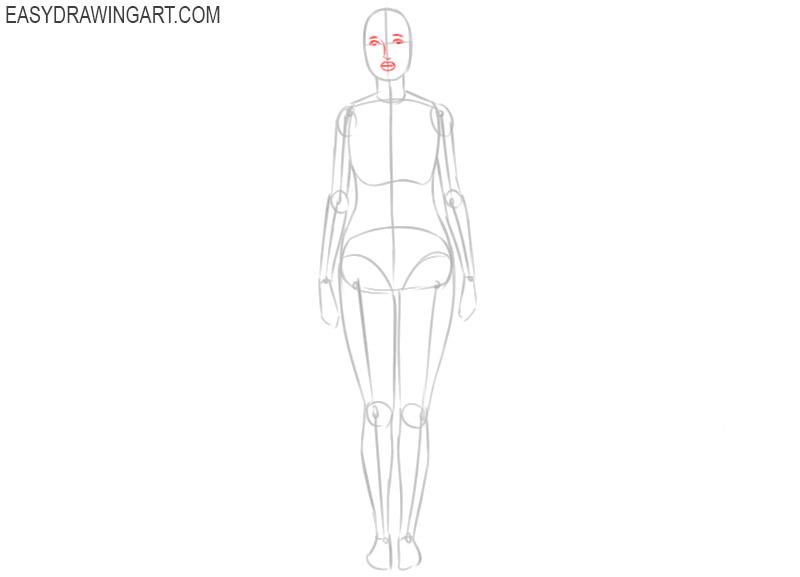 how to draw female body anatomy