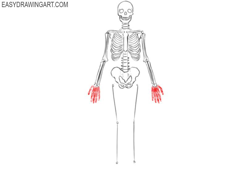skeleton drawing easy