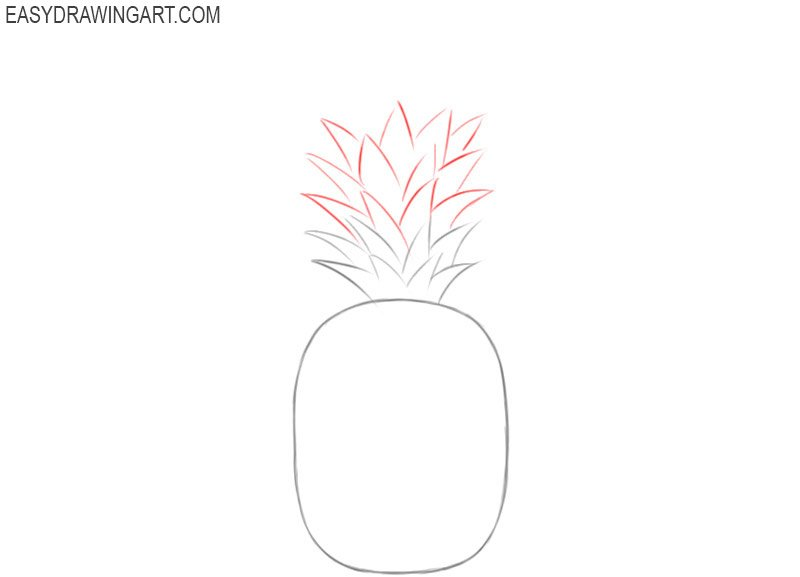 How to draw pineapples