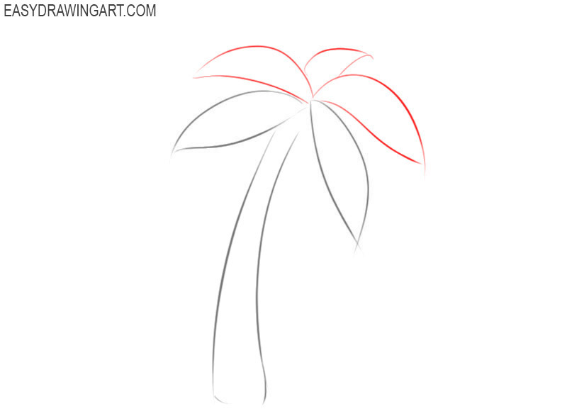 How to sketch a palm tree