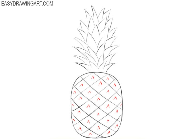 Learn how to draw a pineapple